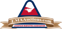 LMA Auctions